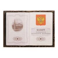 Обложка для паспорта кожа ОПР-2