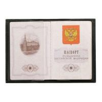 Обложка для паспорта ОП л