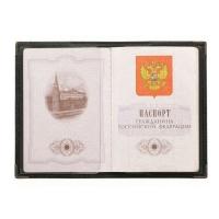 Обложка для паспорта ОП-3 рус